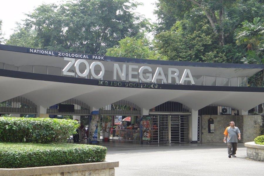 حديقة الحيوان في ماليزيا